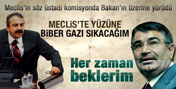 Sırrı Süreyya Önder Bakan Şahin'in üzerine yürüdü