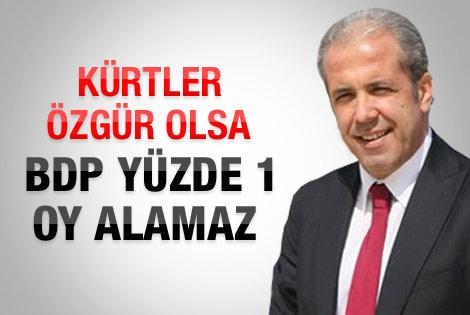 Şamil Tayyar: Kürtler özgür olsa BDP yüzde 1 bile alamaz