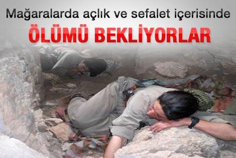 Teslim olan PKK'lıdan acı itiraflar