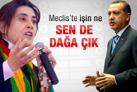 Erdoğan'dan Leyla Zana'ya yanıt - İzle