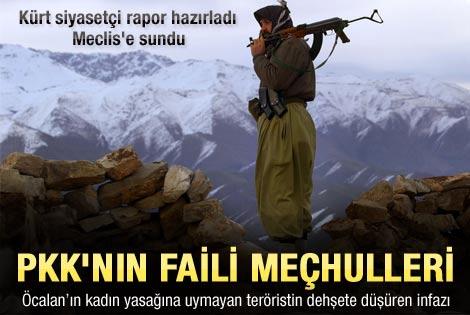 TBMM'ye sunulan PKK'nın korkunç infaz listesi