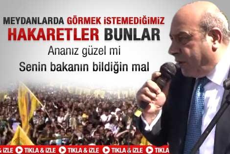 BDP'li Hasip Kaplan: Ananız güzel mi - Video