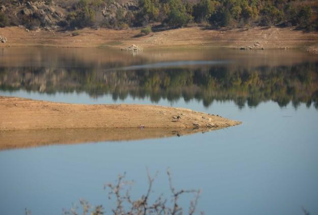 Yağışlar Trakya barajlarını doldurdu