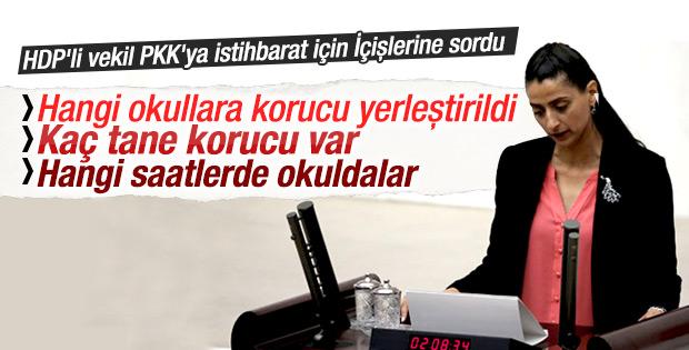 HDP'li vekilden bakanlığa skandal sorular