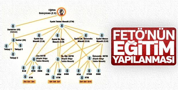 FETÖ'nün eğitim yapılanmasını gösteren şema