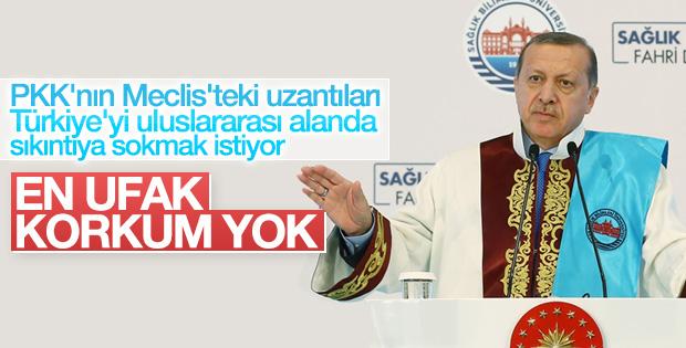 Erdoğan HDP'liler hakkında ilk kez konuştu