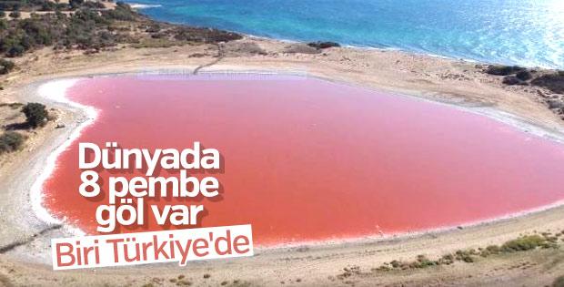 Dünyada 8 pembe göl var, biri Türkiye'de