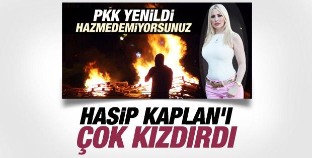 HDP'li Hasip Kaplan: Kedicikler IŞİD'e gitsin