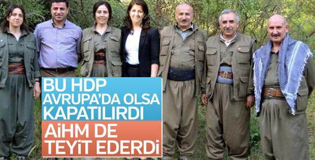 'HDP Avrupa'da olsaydı AİHM kapatılsın derdi'