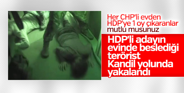 HDP milletvekili adayının evindeki PKK'lı yakalandı