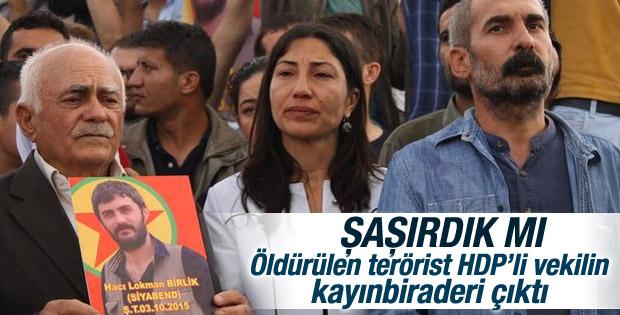 Şırnak'ta öldürülen terörist HDP'li vekilin akrabası çıktı