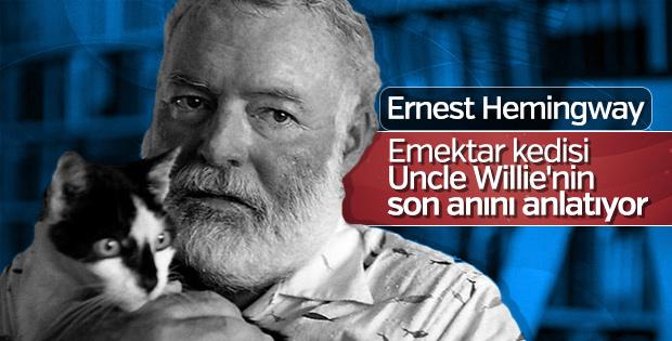 Hemingway ve kedileri