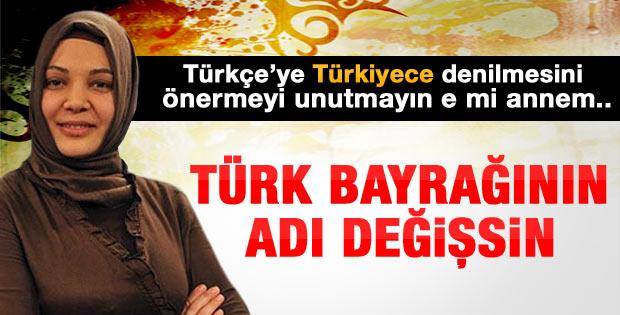 Hilal Kaplan:  Türk bayrağının adı değişsin demedim