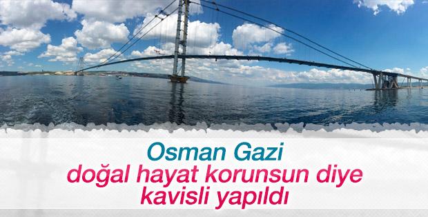 Osman Gazi Köprüsü neden kavisli yapıldı