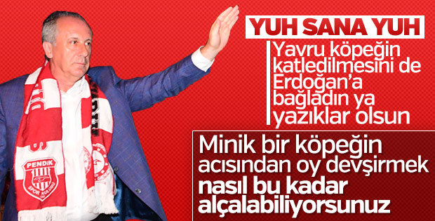 İnce, köpeğin ayaklarının kesilmesini Erdoğan'a bağladı