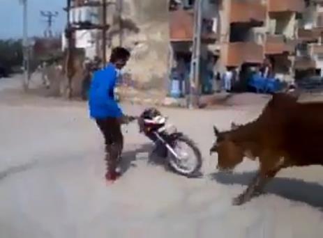 Motoruyla hava atan adama inek ayarı -izle