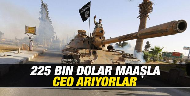 IŞİD elindeki petrolü yönetecek CEO arıyor