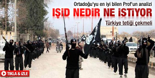 Mesut Hakkı Caşın: Türkiye tetiği çekmeli
