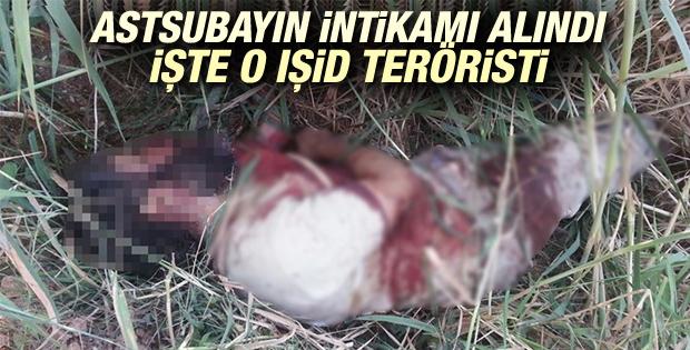 AA astsubayı şehit eden teröristin fotoğrafını yayınladı