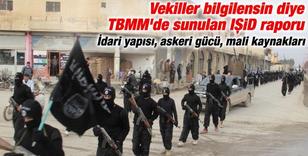 TBMM'den vekillere IŞİD raporu