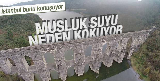 İstanbul'da musluk suyu neden kokuyor