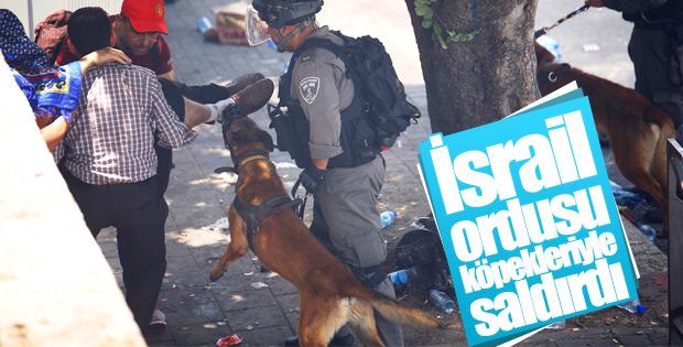 Kudüs'te Müslümanlara insanlık dışı müdahale