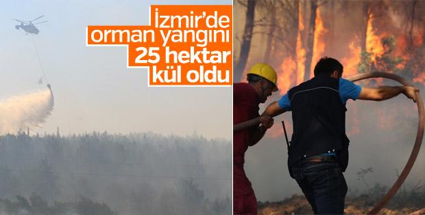 İzmir Buca'da orman yangını