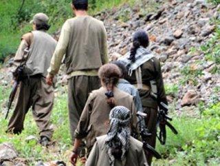 Terör örgütü PKK'ya üst düzey darbe