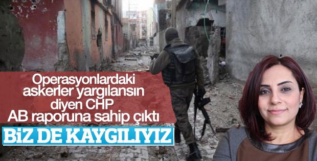 CHP'li vekilden AB raporu yorumu: Çok kaygılıyız