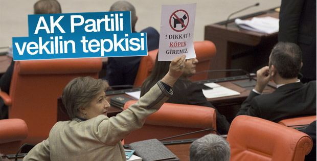 AK Partili vekilden dikkat köpek giremez kağıdı