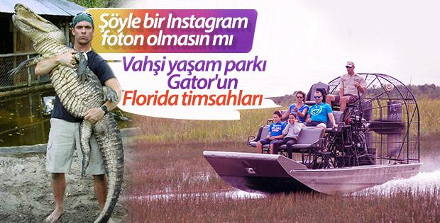 Timsah rotası desek: Miami Gator Park