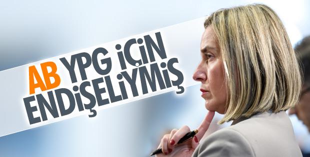 AB'den Türkiye'yi  Suriye konusunda uyarmaya kalktı