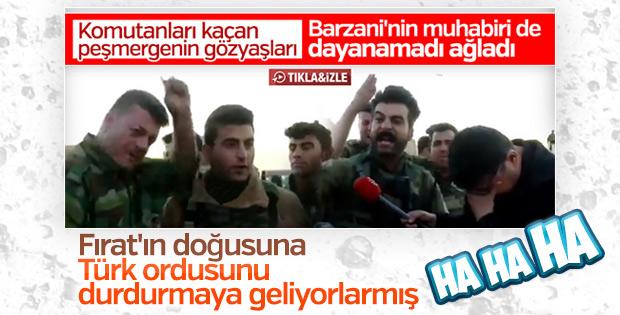 Peşmerge YPG'li teröristlere desteğe gidiyor