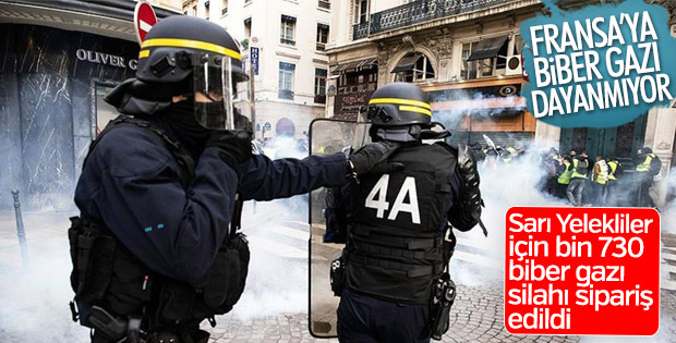 Fransa silah siparişi verdi