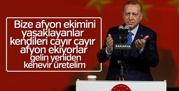 Erdoğan: Bize afyonu yasaklayanlar cayır cayır üretiyor