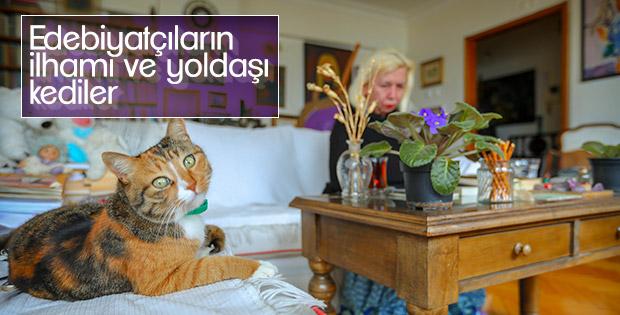Edebiyatçıların kedilerle olan dostluğu