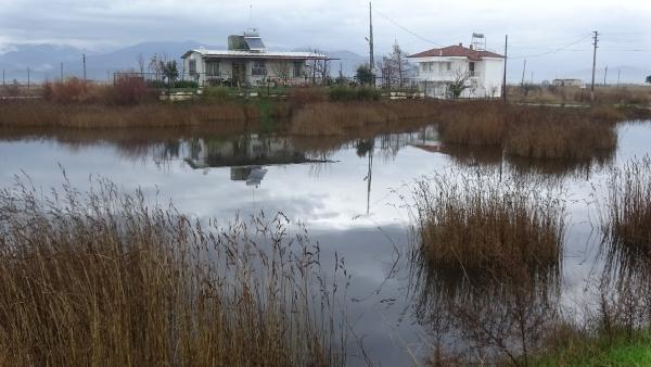Edremit Haberleri: Edremit ve Burhaniyede, tarım arazileri su altında kaldı 80