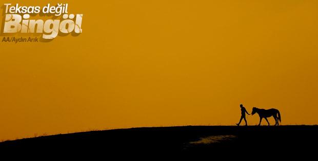 Bingöl'de karlı arazilerde besicilik manzarası