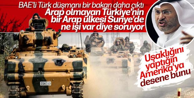 BAE Türkiye karşıtlığına devam ediyor