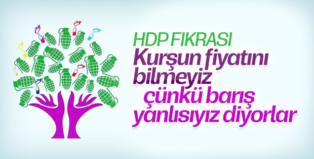 HDP Eş Başkanı Temelli: Biz barış sevdalısıyız