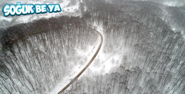Trakya'dan kar manzaraları