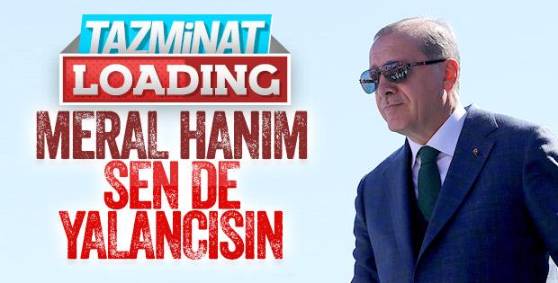 Cumhurbaşkanı, Meral Akşener'e dava açtı