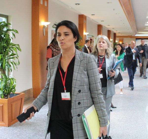 Mevlüt Çavuşoğlu'ndan Fransız parlamentere ayar