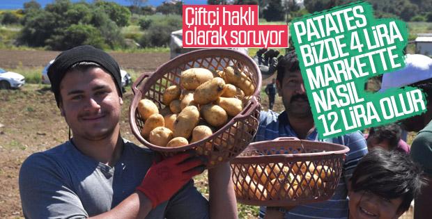 Patates tarladan İstanbul'a gelene kadar zamlanıyor