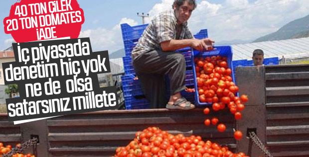 Rusya 21 ton domatesi Türkiye'ye geri gönderdi