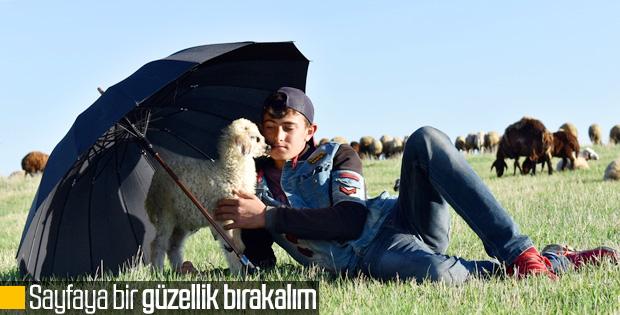Kars'taki çobanlar yeni doğan kuzuları şemsiyeyle koruyor