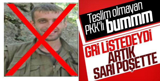 Elazığ'da gri listedeki PKK'lı etkisiz hale getirildi