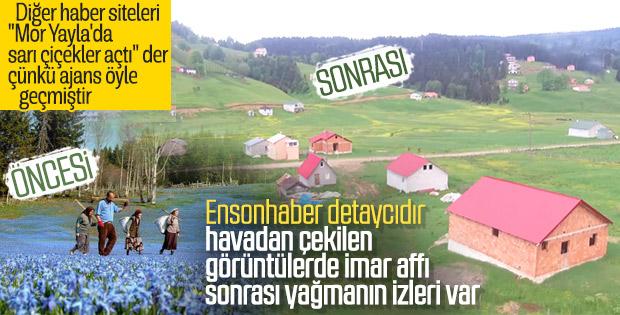 Trabzon'un Mor Yayla'sı havadan görüntülendi