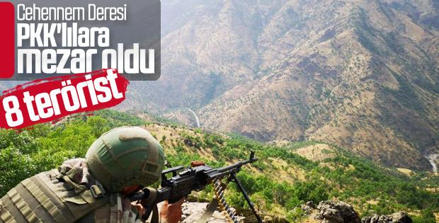 Şırnak'ta terör operasyonu: 8 terörist etkisiz hale getirildi