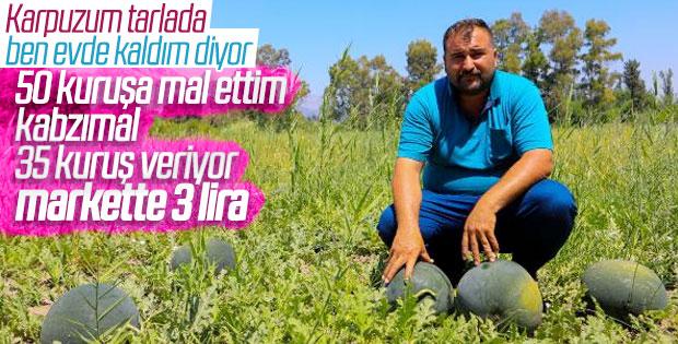 Antalya'da çiftçinin 500 ton karpuzu elinde kaldı